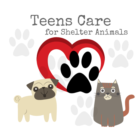 Teens Care for Shelter Animals