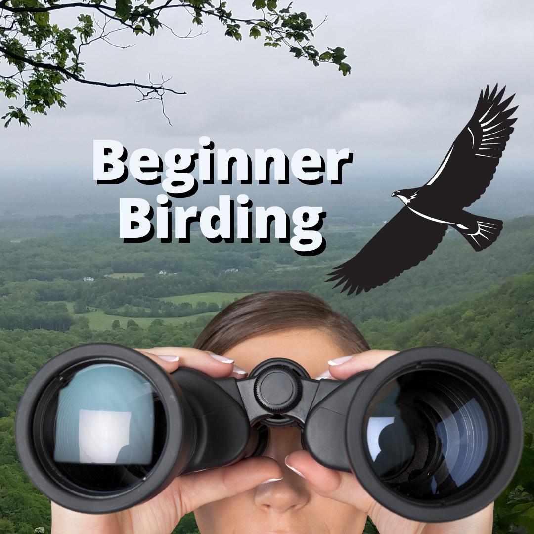 Beginner Birding at Thacher park