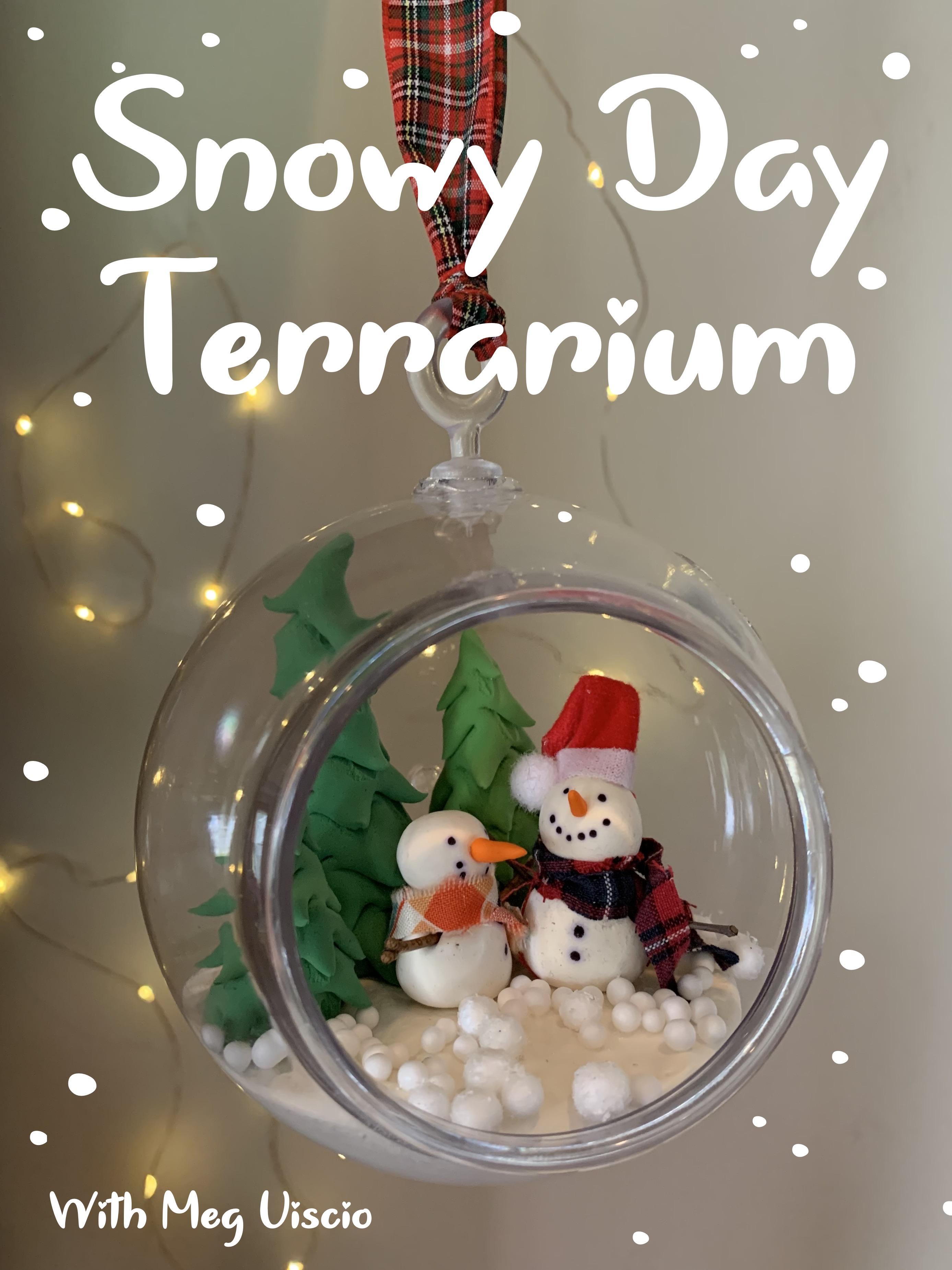 Snowy Day Terrarium with Megan Viscio